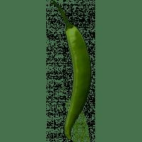 piment jalapeno