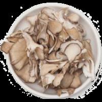 champignons pleurotes
