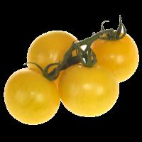 tomates cerises jaunes