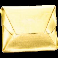 cube de bouillon de boeuf