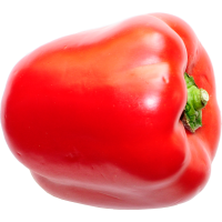 poivron(s) rouge(s)