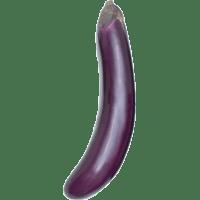 aubergine mini