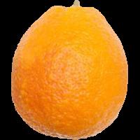 orange(s)