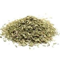 fenouil sec grain