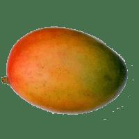 mangue(s) fraîche(s)