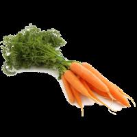carotte petite frais