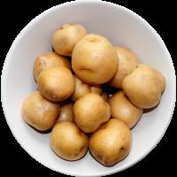 pomme de terre grelot