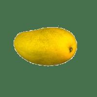 Mangue(s) ataulfo