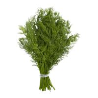 Bouquet d'aneth