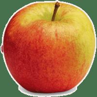 Pomme(s) cortland