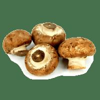 champignons crimini