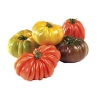 tomates ancestrales