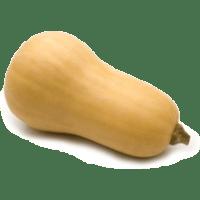 Courge butternut frais